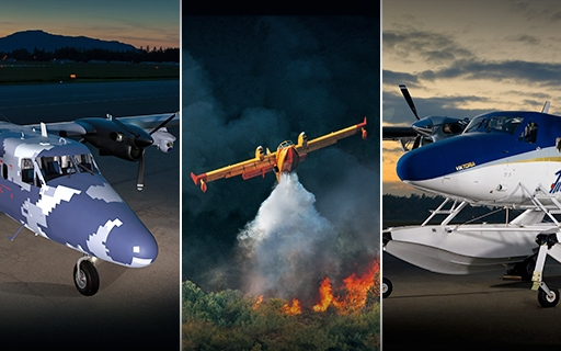 Viking Guardian, Aerial Firefighter and Viktoria aircraft combo image